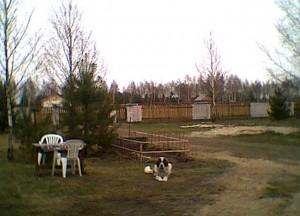 Zaczątki ogrodu